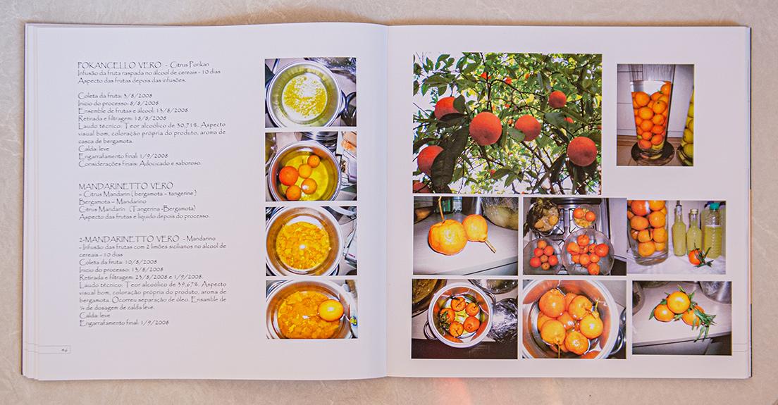 Vera Livros Fotos 2 258
